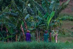 2019.06.10.4742 Ngorongoro Farm House (Brunswick Forge) Tags: karatu 2019 grouped tanzania africa outdoor outdoors nature nikkor200500mm summer winter peopleportraits ngorongoro nikond500 inmotion fx tamron1530mm water river lake day cloudy clear rain