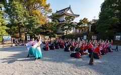 2018-11-11 - 13.16.05 - 5D4_2453 - 1 (Rossell' Art) Tags: château japon kyoto nijo nijojo