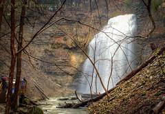 A Wet Day (SoS) (13skies) Tags: ancaster hamiltonon tiffanyfalls highdynamicrange hdr falls waterfalls wet rainyday canont3i longexposure rain smileonsaturday letifflow