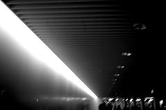 One Moment   in a City (shou yokoya) Tags: film 135 35㎜ monochrome kodak trix 400tx 400 bw bessat voigtlănder nokton classic 40㎜ street urban