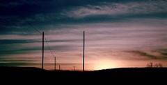 the road (bluebird87) Tags: sunset road nikon n90s dx0 c41 epson v600 kodak ektar