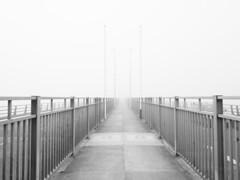 M2252632 E-M1ii 14mm iso200 f8 1_50s 1 (Mel Stephens) Tags: 20190825 201908 2019 q3 4x3 wide olympus mzuiko mft microfourthirds m43 714mm pro omd em1ii ii mirrorless gps grayscale uk scotland dundee tayside fog haar weather bw black white tay road bridge structure