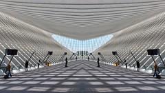 Heart (Rob Oo) Tags: abstract architecture belgium belgië ccby40 calatrava gimp liègeguillemins luik ro016b heart