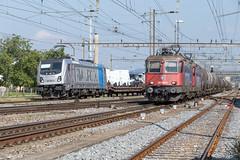 BLS vs SBB (daveymills37886) Tags: railpool 187 001 sbb re 44 421 393 389 pratteln bombardier traxx ac3 bls baureihe