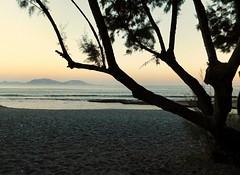 Taverna vista mare... (silvia07(very busy)) Tags: tramonto crepuscolo sunset mare sea spiaggia beach albero tree tamerice tamarix taverna rami branches sky cielo