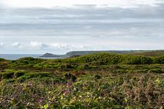 Along the Coastline (Jocey K) Tags: triptoukanderoupe2019 june england uk cornwall landsend wildflowers seascape sea water hills clouds sky fields
