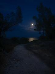 walking to the moon (ralfkai41) Tags: nacht night landscape landschaft küste nature vollmond nachtfotografie mediterraneansea natur mittelmeer ledramont nightshot südfrankreich mond côted'azu southframce weg fullmoon france mood coast frankreich trail