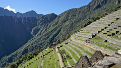 The terraces of Machu Picchu (Chemose) Tags: sony ilce7m2 alpha7ii mai may pérou peru machupicchu paysage landscape montagne andes mountain inca terrasse terrace intipunku portedusoleil sungate chemindeinca incatrail caminoinca architecture