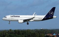 Lufthansa Airbus A320-214(SL) D-AIWE (RuWe71) Tags: deutschelufthansaag lufthansa lhdlh lufthansagroup germany deutschland airbus airbusa320 a320 a320200 a320214 a320214sl airbusa320200 airbusa320214 airbusa320214sl daiwe msn8680 dauaw neustadtadweinstrasse brusselsairport brusselszaventem brusselszaventemairport brusselzaventem zaventem bru ebbr narrowbody twinjet landing winglets sharklets sunshine