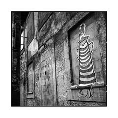 duck? • porto, portugal • 2019 (lem's) Tags: duck canard collage art graffiti porto street rue portugal rolleiflex t