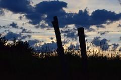 (Jean-Luc Léopoldi) Tags: contrejour crépuscule sunset nuages clôture fence ciel nightfall tombéedelanuit campagne