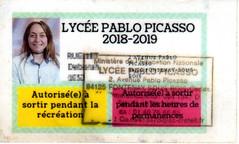 trouvFille4 (hyakoukoune) Tags: trouvé fontenay fontenaysousbois 94120 val de marne france jeune jeunefille carte lycée pablopicasso 2018 2019 photo identité