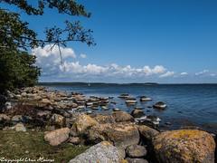 Almö Naturreservat 082019 01 (U. Heinze) Tags: schweden sverige sweden nature natur naturreservat almö olympus omd em1markii 12100mm wasser steine