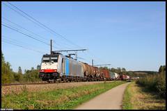 LINΞΛS 186 447 // Zichem 30-08-2019 (Erik Piussi) Tags: l35 lineas 186 447 zichem cargo railpool