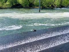 Let it flow (tanith.watkins) Tags: hambleden thames weir river water letitflow smileonsaturday
