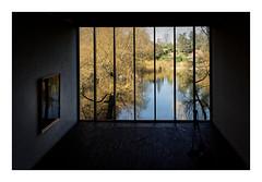 Fenêtre sur lac (Jean-Louis DUMAS) Tags: tree window nature museum lac musée paysage arbre lake art colors artist artistic bassin artiste