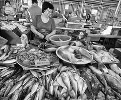 Fish Lady (peterphotographic) Tags: p7260673sefexedwm olympus em5mk2 microfourthirds mft ©peterhall penang malaysia seasia asia nik silverefexpro2 blackandwhite blackwhitephotos bw monochrome fish fishmarket market fishlady shop shopping pulautikus pulaupinang