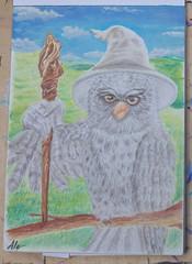 Gandalf (Paw - Paw) Tags: lotr lord rings gandalf hobbit fanart owl landscape art drawing fantastic creatures fantasy lordoftherings tolkien