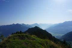 DSC00476 (Bergwandern Alpen) Tags: alpen alps bergwandern hiking planggenstock hirzli aussicht bergpanorama federispitz speer walensee