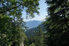 DSC00567 (Bergwandern Alpen) Tags: alpen alps bergwandern hiking glarneralpen niederurnertal durchblick speer federispitz