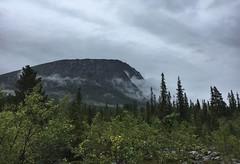 Path from Njunjes to Kvikkjokk (maddeaboutthewild) Tags: padjelanta padjelantaleden badjelannda badjelanda lapland lappland laponia tarradalen fjäll mountain mist