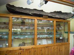DSCN1630 (chief1120) Tags: stonehenge americasstonehenge megalithic archeology ancient prehistoric stone observatory henge