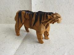 Tiger (Satoshi Kamiya) (maredo77) Tags: origami tiger satoshi kamisha