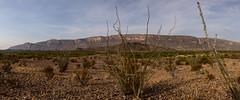 2C1A2471-Big Bend NP Scenic Overlook