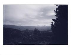 Tabernash Vista (tobysx70) Tags: instax fujifilm fuji wide monochrome bw black white instant film bigpitchers 500af camera tabernash vista colorado co clouds sky pine tree silhouette mountains landscape forest valley cloudy cloudporn polaradoone polarado 072118 toby hancock photography