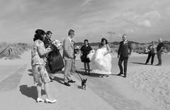 The Bride, there she is [2] (José D...) Tags: wedding weddingparty kijkduin opkijkduin indeduinen thedunes bruiloft bw zwartwit flickraward flickrclick flickrstar flickrsun flickrsocial flickrbest flickrgroups flickrspecial spirit bwwithmynikon