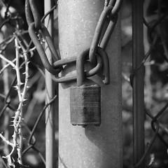 Rusted Lock (Gene Ellison) Tags: padlock unlocled open rusted chain fence post wire blackwhitephotos bw fujifilm acros sooc
