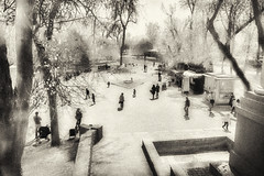people in the park (Pomo photos) Tags: sepia blackandwhite blackwhite bw monochrome mono mood people girl girls child children kid tree trees water river lake park phone cellphone street urban city cityscape leaf leaves play moody autumn film grain