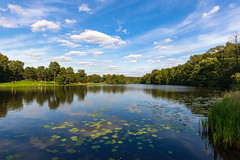 Summer Day (gubanov77) Tags: nature summer pond kuzminki moscow russia blue summertime water sky clouds shibaevskypond park outdoor relax landscape