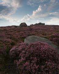 beehive stone (popcornChris) Tags: peakdistrict heather flowers rocks beehive surpriseview owertor
