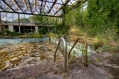 The Decay Pool