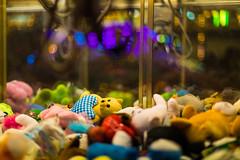 Rescue Me! (nicolasheinzelmann) Tags: plüschtiere bümplizerchilbi teddybär teddybear stadt schweiz bümpliz bern color colour farbe farbig canoneos5dmarkiv 5dmkiv 5dmiv canonef50mmf14usm evening dslr switzerland lights light urban 16august2019 august nicolasheinzelmann