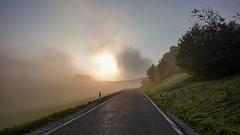 easy ride - Sony RX0M2 (Andreas Voegele) Tags: sony sonyrx0ii sonyrx0m2 rx0ii rx0m2 andreasvoegelephoto ride easyride fog sun
