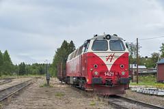 Cathis. Inlandsbanans dieselloco at Sveg. (klevsand) Tags: inlandsbanan tmz nohab 1421 cathis sweden railway sveg diesel locomotive loco