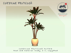 [Kawukewa Designs] Cordyline Fruticosa (Kawukewa Designs) Tags: plant banana palm potted tropical landscaping landscape decor home raphia raffia california vegetation fern rock rocks boulder cordyline musa secondlife second life kawukewa garden