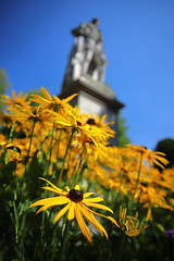 Richard's View (Idreamofpies) Tags: chester cheshire england great britain uk europe canon ©idreamofpiesphotography idop flowers daisy yellow blue sky statue marble sculpture 2nd marquess westminster richard grosvenor flora skyline borders