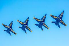 Blue Angels (Thomas Hawk) Tags: america bayarea blueangels california marinadistrict navy sfbayarea sanfrancisco usnavy usa unitedstates unitedstatesnavy unitedstatesofamerica westcoast airplane military fav10 fav25 fav50