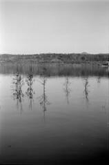 22 (mati.a) Tags: chile 35mm film bw analog ilford hp5 ilfordhp5plus nikon fm2 nikonfm2 reflection water landscape paisaje
