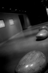 What I saw (shou yokoya) Tags: film 135 35㎜ kodak trix 400tx 400 analogue bw monochrome bessat classic 40㎜ underground urban sapporocity nokton voigtlănder