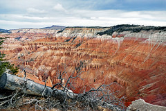 Bryce Canyon National Park. (Bernard Spragg) Tags: brycecanyonnationalpark utah usa hoodoos landscape scenery lumix geology nature cco