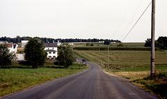 (bluebird87) Tags: nikon f5 dx0 c41 epson v800 jobo kodak ektar amish farm fields