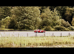 "IMG_8613-001 • <a style=""font-size:0.8em;"" href=""http://www.flickr.com/photos/82310437@N08/48656620722/"" target=""_blank"">View on Flickr</a>"