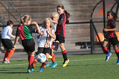 """HBC Voetbal • <a style=""""font-size:0.8em;"""" href=""""http://www.flickr.com/photos/151401055@N04/48656701763/"""" target=""""_blank"""">View on Flickr</a>"""