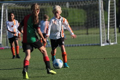 """HBC Voetbal • <a style=""""font-size:0.8em;"""" href=""""http://www.flickr.com/photos/151401055@N04/48656702978/"""" target=""""_blank"""">View on Flickr</a>"""