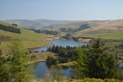 The View Over the Lakes (CoasterMadMatt) Tags: bwylchnantyrarian2019 bwlchnantyrarian2019 bwylchnantyrarian bwlchnantyrarian bwylch nantyrarian bwlch forestrycommission forestry commission llyn lake lakes liwernogpond liwernog pond scenery countryside rural landscape landscapes naturallandscapes valley valleys mountain mountains hill hills view views viewpoint attraction attractions ceredigion ceredigionattractions cardiganshire canolbarthcymru midwales canolbarth mid cymru wales britain greatbritain gb unitedkingdom uk europe easterday2019 easterday easter april2019 spring2019 april spring 2019 coastermadmattphotography coastermadmatt photos photographs photography nikond3200