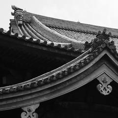 Rooflines (Nick Condon) Tags: architecture blackandwhite japan olympus45mm olympusem10 roof temple tile tokyo